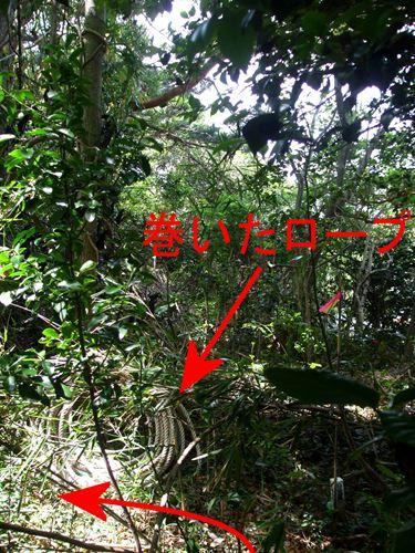 katsurashima12.jpg