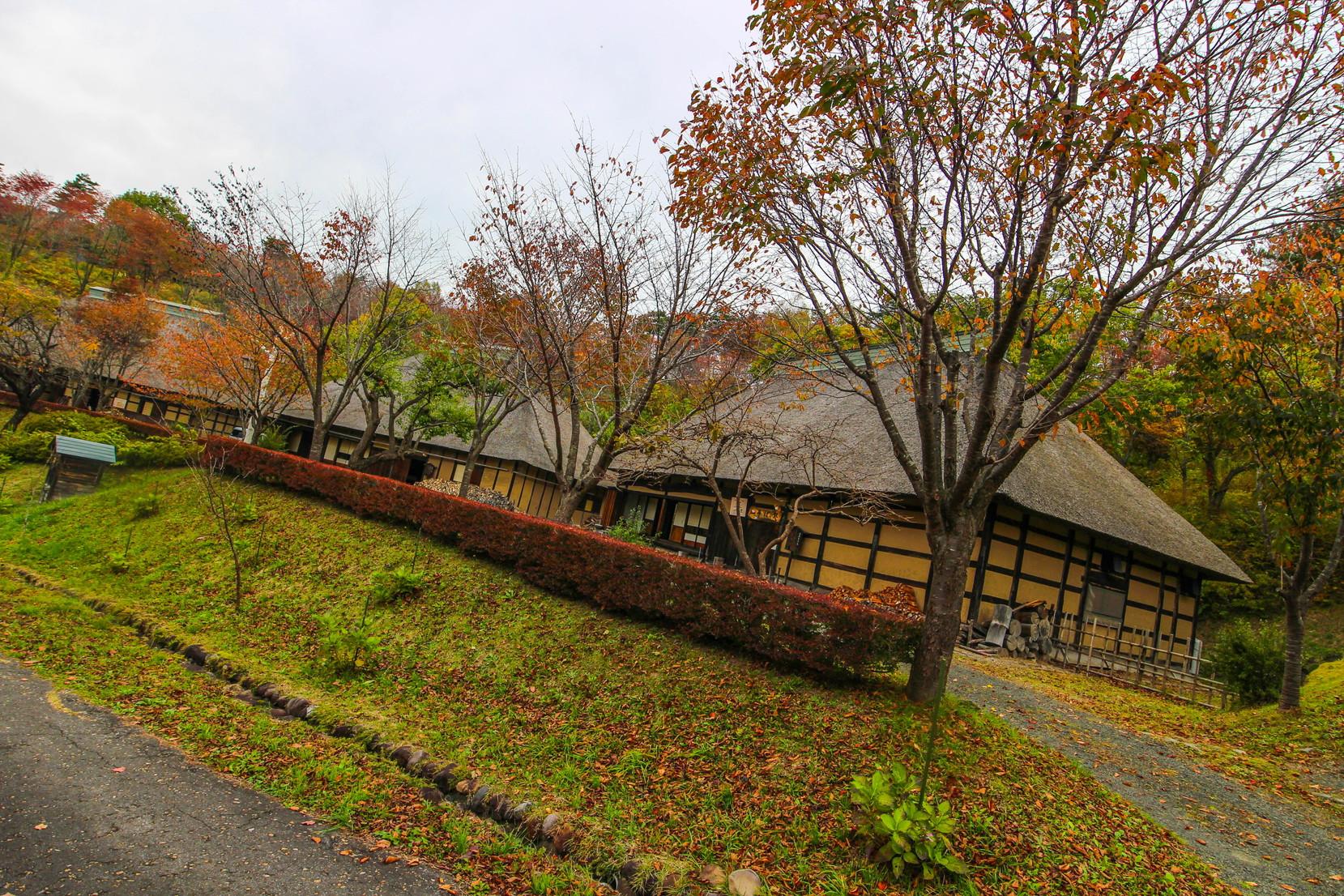 田子町タプコプ創遊村_021