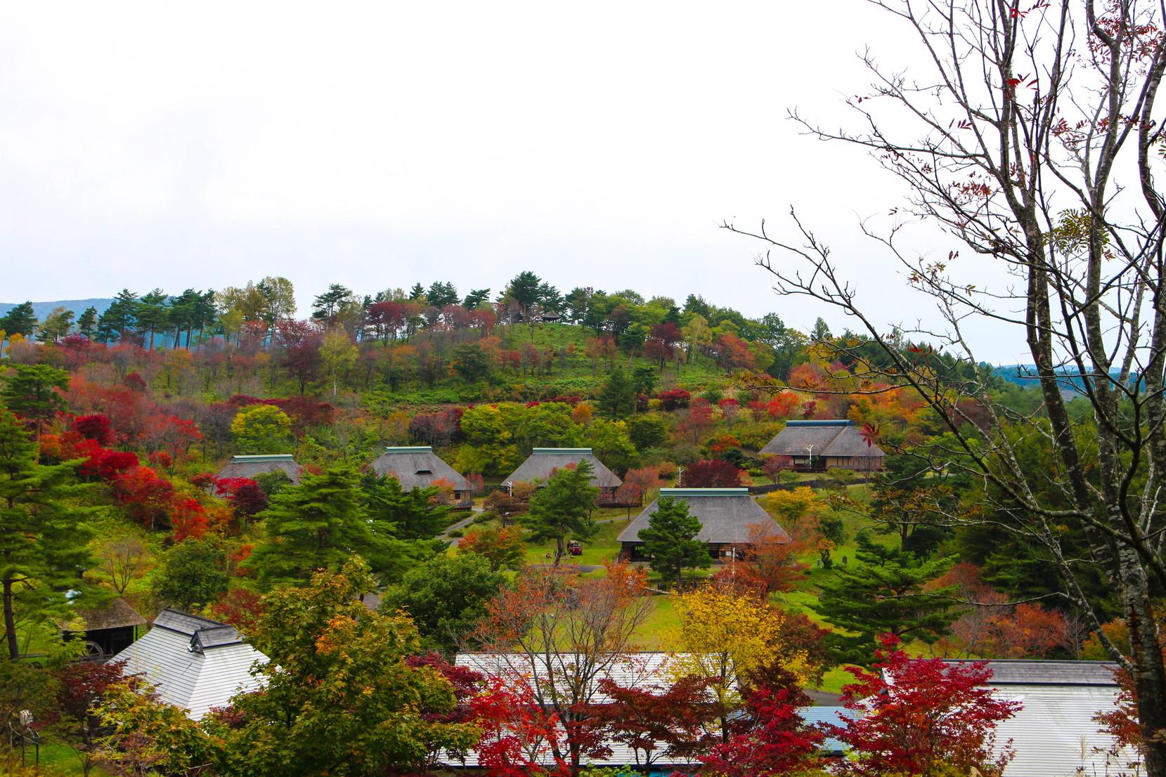 田子町タプコプ創遊村_022