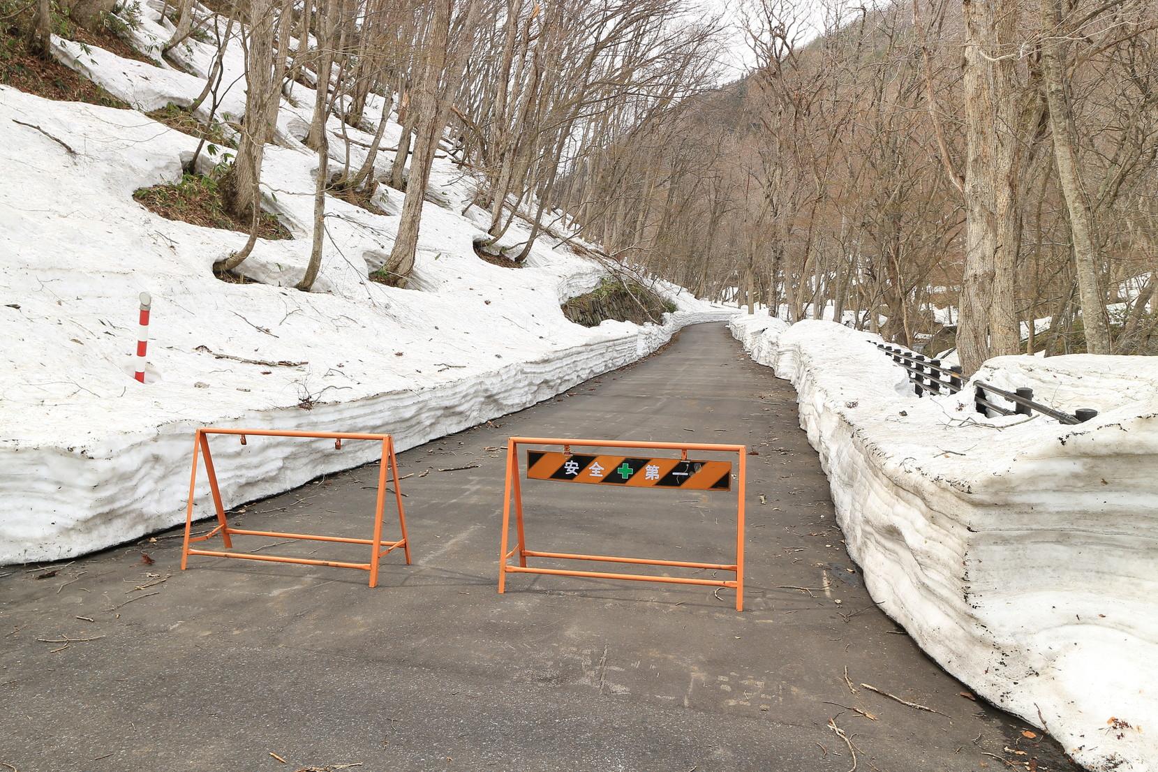 青森県田子町 みろくの滝の様子は?_001