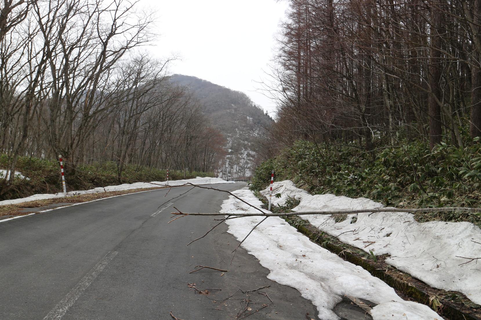 青森県田子町 みろくの滝の様子は?_005
