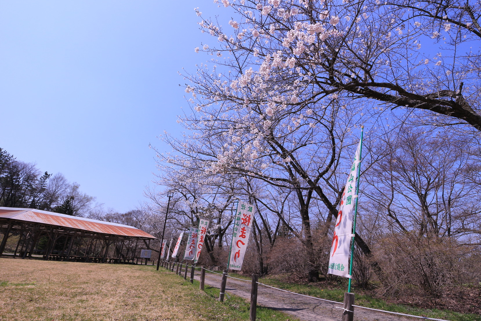 田子町地域おこし協力隊20150423_004