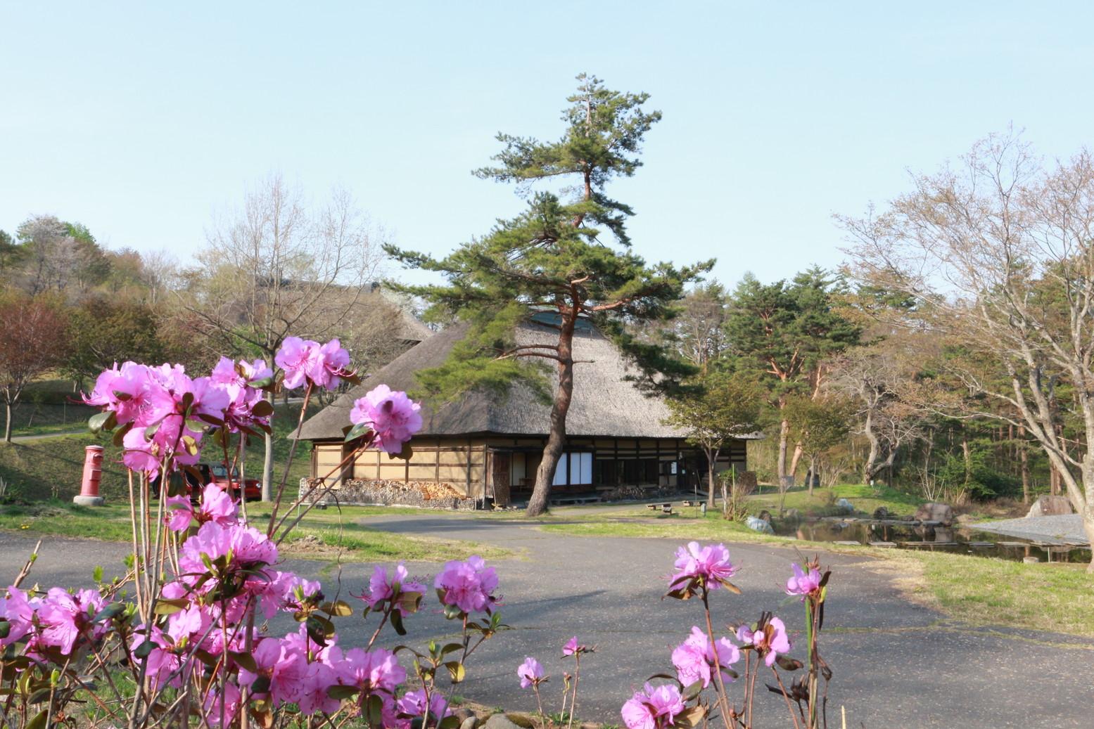 田子町地域おこし協力隊つっちーのブログ20150430_010