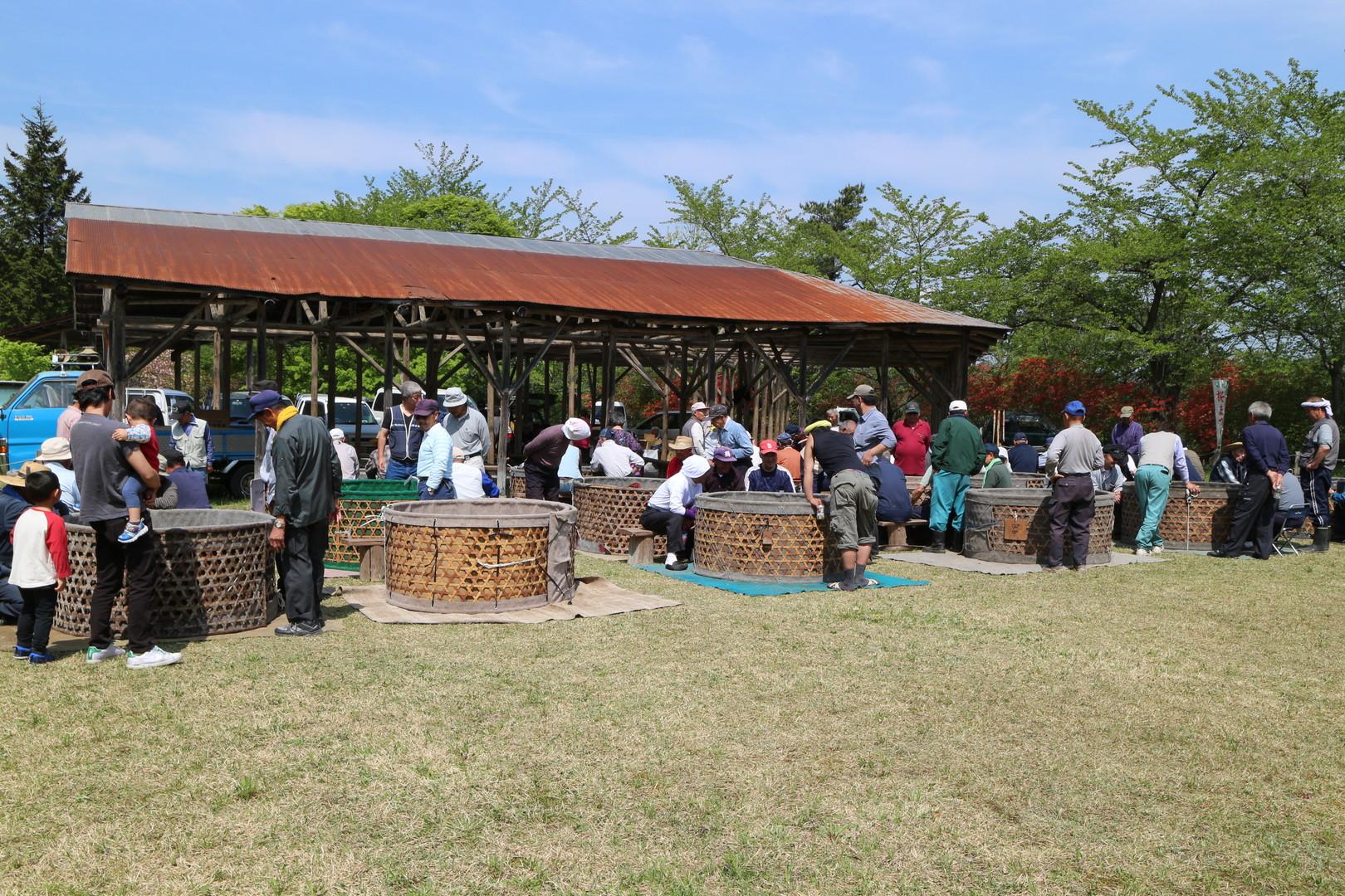 田子町地域おこし協力隊つっちーのブログ20150504_106