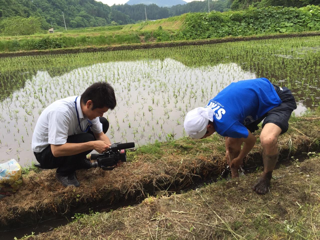 青森県田子町地域おこし協力隊 つっちーのブログ_002