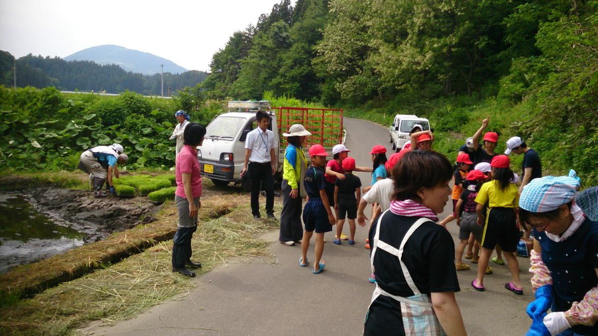 青森県田子町地域おこし協力隊 つっちーのブログ_004