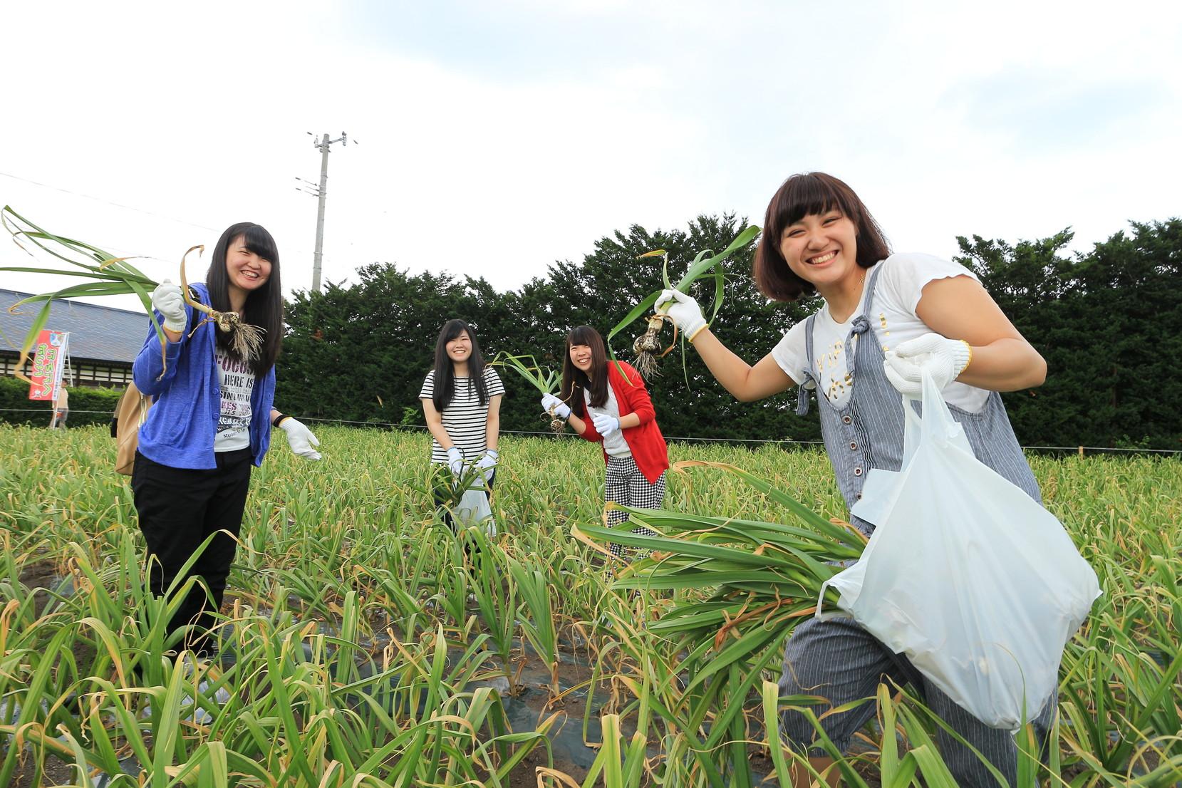 にんにく収穫祭_005