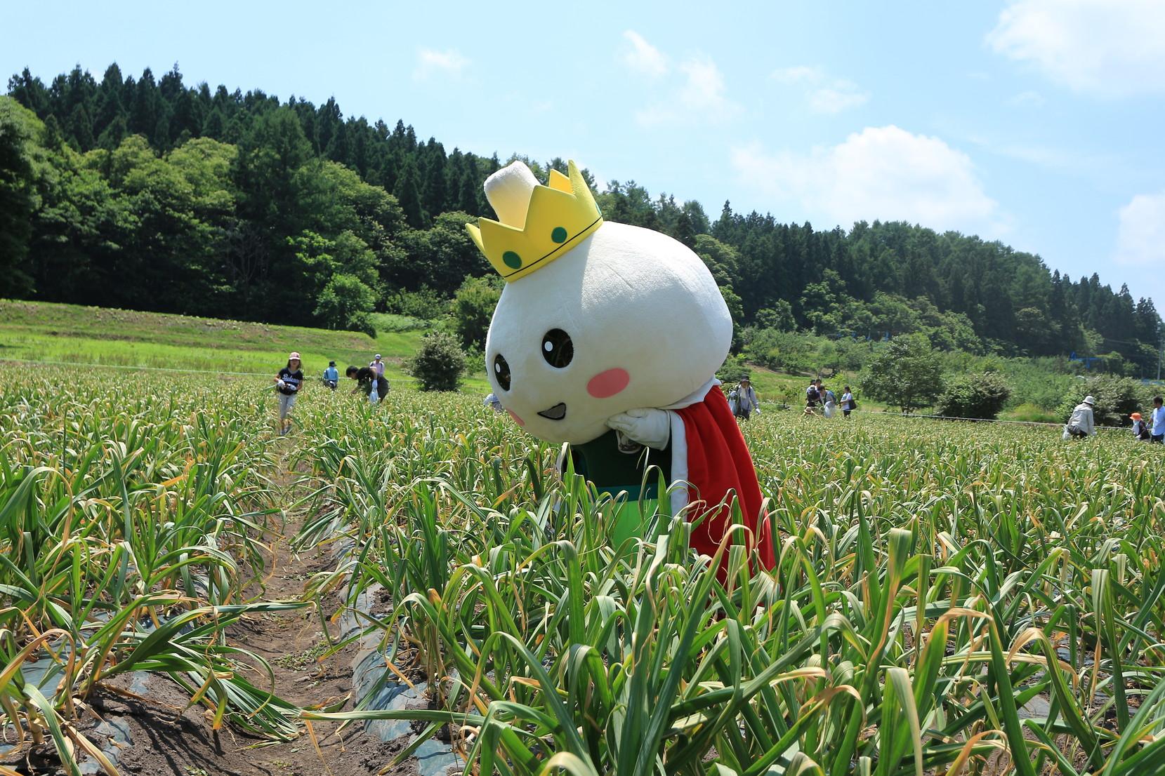 にんにく収穫祭_010