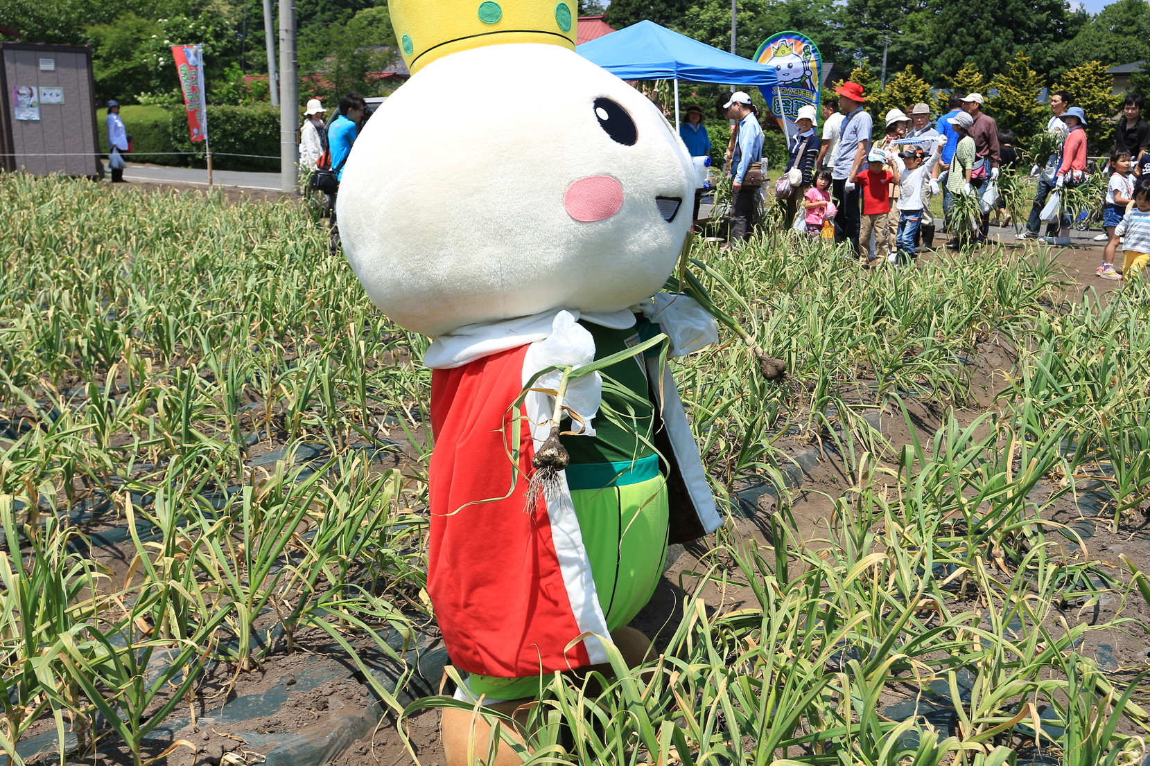 にんにく収穫祭_011