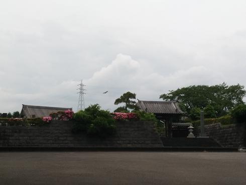 本当は富士山が見えるんだけど・・・