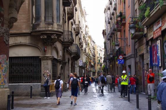 27.05.20~一眼 スペイン 392_ks