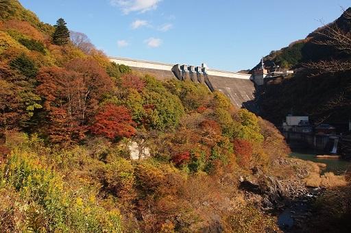 11月草木ダム