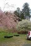 桜の森の真下あたりの公園