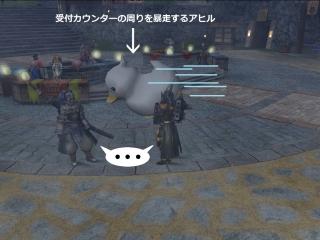 20141230-02 アヒル暴走