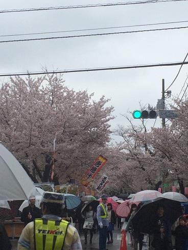 150405桜祭り