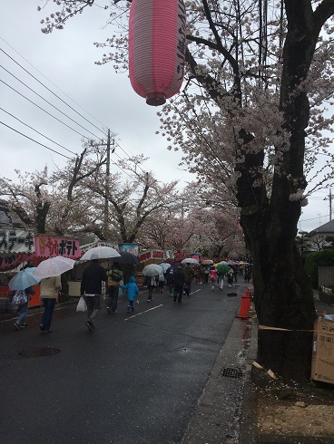 150405桜祭り②