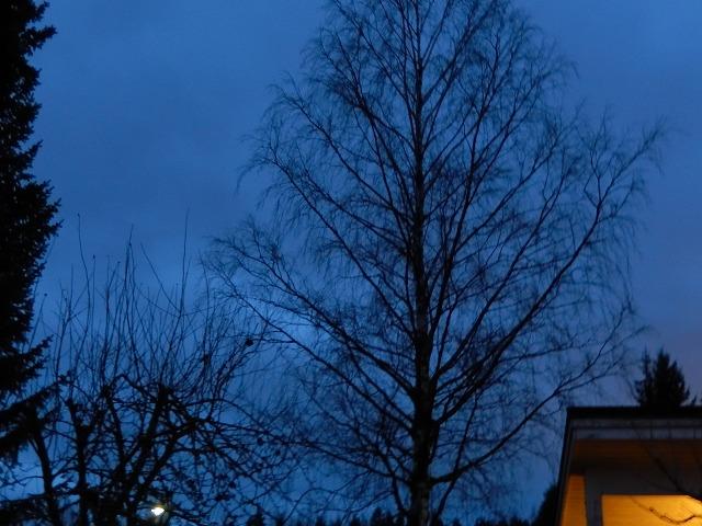 夕暮れのブルー