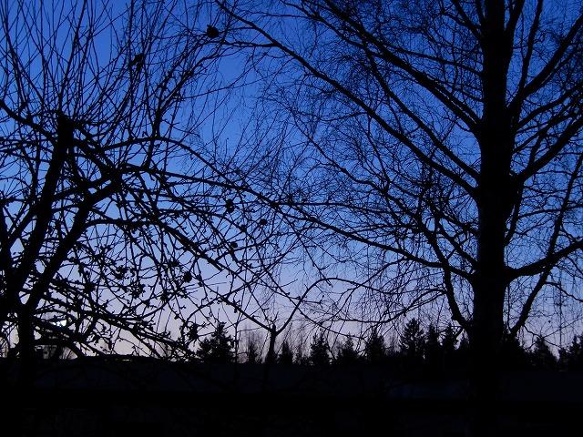 夜と朝の狭間