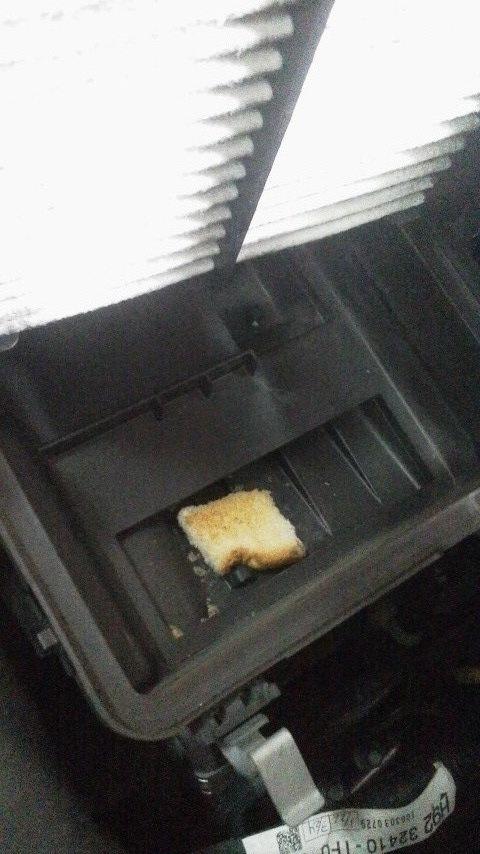 パンの端切れ