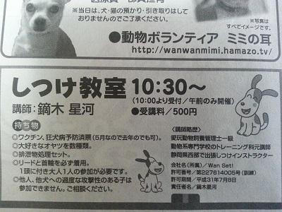 20150509浜松ふれあいフェスティバルフェスティバル4