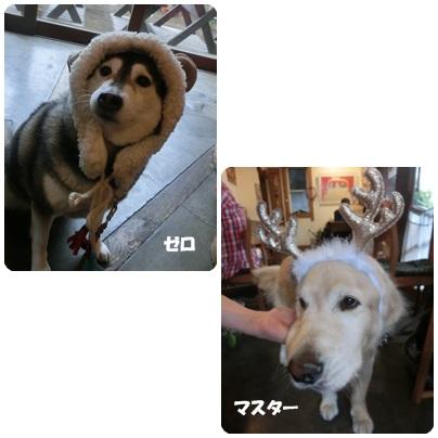 2014-12-98.jpg