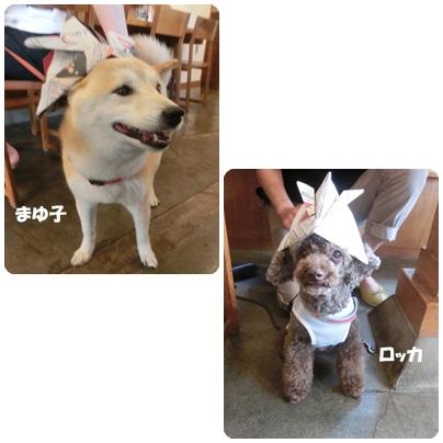 2015-5-22.jpg