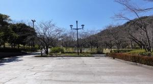 鏡山公園20150327-1
