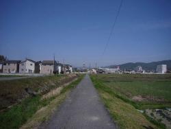 散歩20150422-3