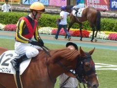 パドック:メジャーエンブレムとルメール騎手