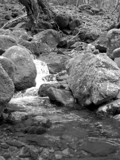 深山幽谷54d