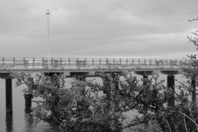 Pier14a