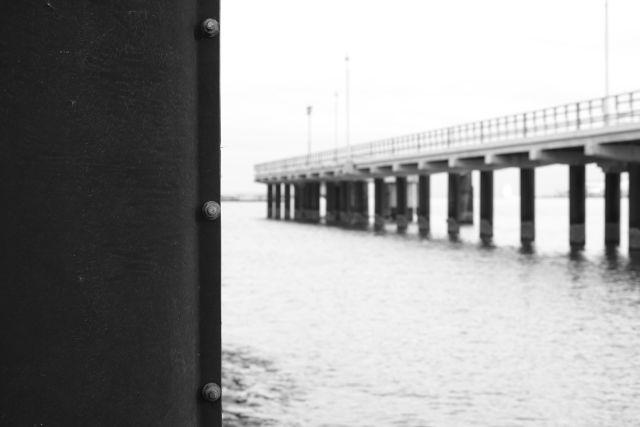 Pier15a