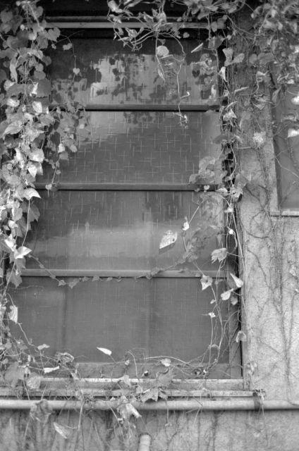 昭和の窓29a
