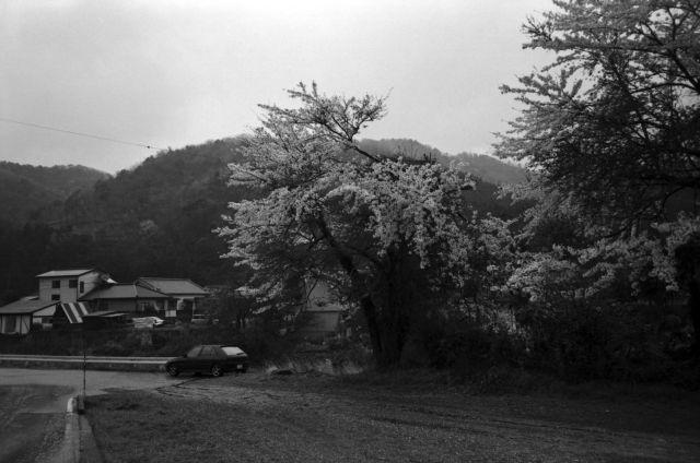 深山幽谷48d