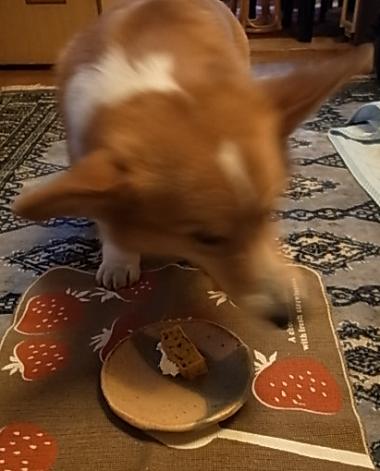 誕生日ケーキ1-2