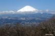 富士山、金時山から