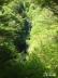 尾白川渓谷道14、神蛇滝