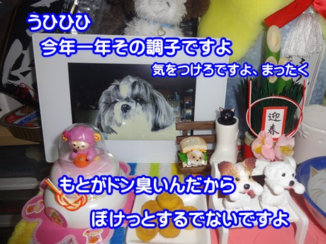 0103-04_2015010319310590a.jpg