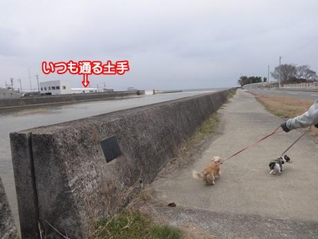 0111-02_20150111200034cd2.jpg