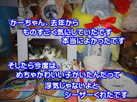 0111-06_201501112001026aa.jpg