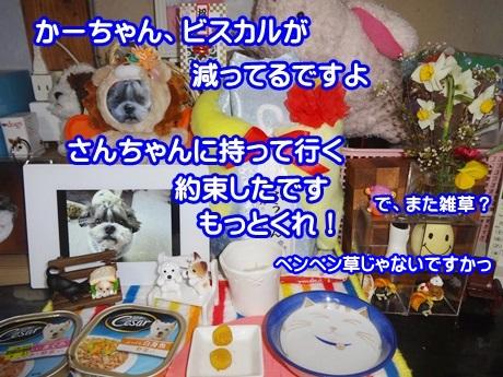 0114-04_20150114163525dc2.jpg