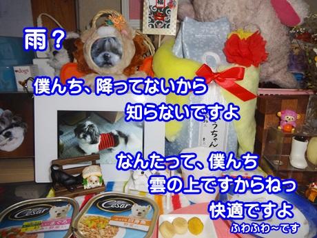 0115-04_20150115134546222.jpg