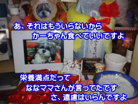 0127-04_2015012716262772a.jpg