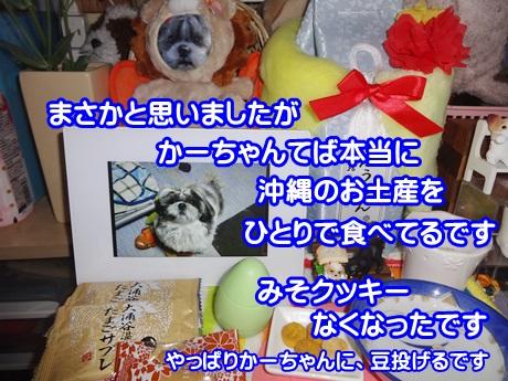 0203-05_20150203153416f1a.jpg
