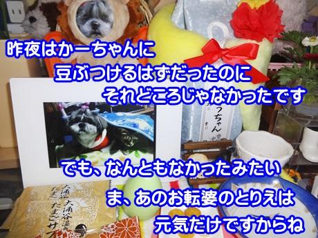 0204-06_20150204152411ad7.jpg