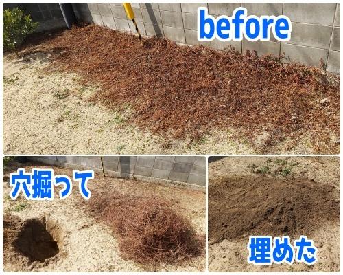 0227-a1.jpg