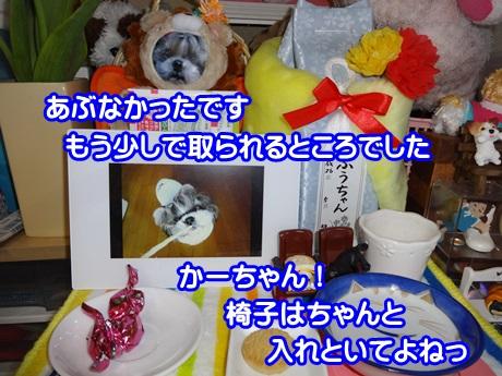 0305-06_20150305143749a4c.jpg