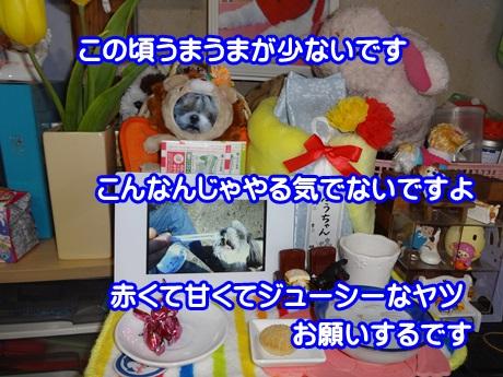 0306-06_20150306144404784.jpg