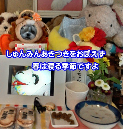0320-06_20150320151400ec7.jpg