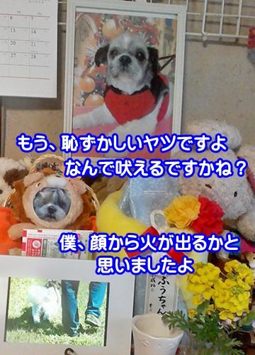 0324-01_20150324170018b89.jpg